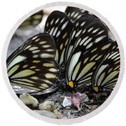 The Butterfly Gathering Round Beach Towel