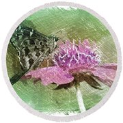 The Butterfly Visitor Round Beach Towel