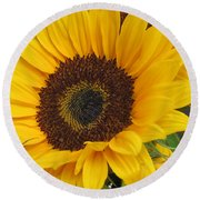 The Color Of Summer - Sunflower Round Beach Towel