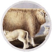 The Cotswold Breed Round Beach Towel