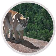 The Cougar 1 Round Beach Towel