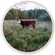 The Cow Round Beach Towel