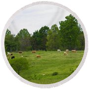 The Cows Of May Round Beach Towel