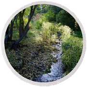 The Creek At Finch Arboretum 2 Round Beach Towel