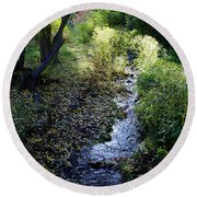 The Creek At Finch Arboretum Round Beach Towel
