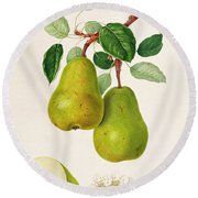 The D'auch Pear Round Beach Towel by William Hooker