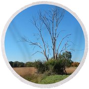 The Dead Tree Round Beach Towel