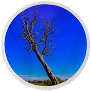 The Death Of  A Tree V5 Round Beach Towel