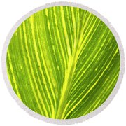 The Detail Of Plant Leaf, Salt Lake Round Beach Towel