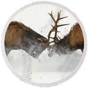 The Duel Of Fighting Elk Round Beach Towel
