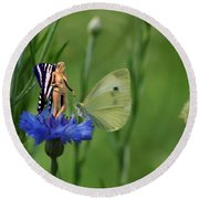 The Faerie And The Cabbage Butterfly Round Beach Towel