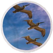 The Flight Of The Pelican Round Beach Towel