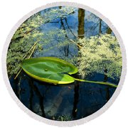 The Floating Leaf Of A Water Lily Round Beach Towel