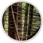 The Forest Combed By The Wind In The Lake Round Beach Towel