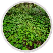 The Forest Floor Round Beach Towel