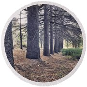 The Forest Of A Thousand Stories Round Beach Towel