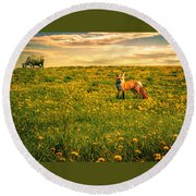 The Fox And The Cow Round Beach Towel