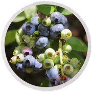The Freshest Blueberries Round Beach Towel