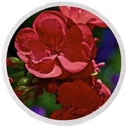 The Geraniums Round Beach Towel