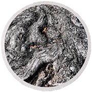 The Gnarled Old Tree Round Beach Towel
