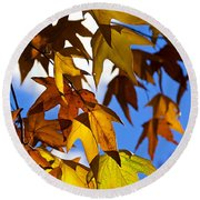 The Golden Hues Of Autumn  Round Beach Towel