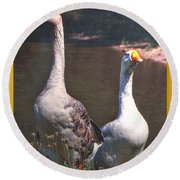 The Goose And The Gander Round Beach Towel