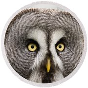 The Great Grey Owl  Round Beach Towel