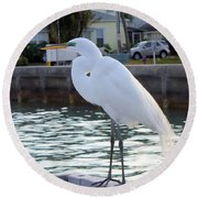 The Great White Egret Round Beach Towel