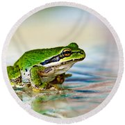 The Green Frog Round Beach Towel by Robert Bales