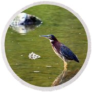 The Green Heron Round Beach Towel