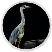 The Grey Heron Round Beach Towel
