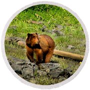 The Grizzly Round Beach Towel