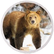 The Grizzly Strut Round Beach Towel