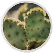 The Heart Of A Cactus  Round Beach Towel