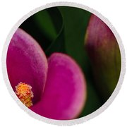 The Heart Of The Lily Round Beach Towel by Christi Kraft