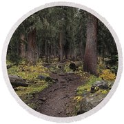 The High Forest Round Beach Towel by Eric Glaser