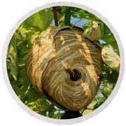 The Hive Round Beach Towel