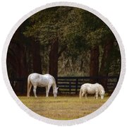 The Horse And The Pony - Standard Size Round Beach Towel
