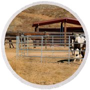 The Horse Ranch 3 Round Beach Towel