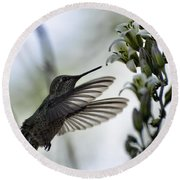 The Hummingbird  Round Beach Towel
