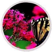 The Hungry Butterfly Round Beach Towel