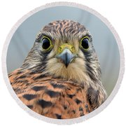 The Kestrel Face To Face Round Beach Towel