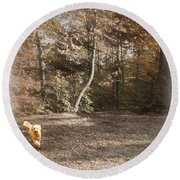 The Labradoodle On The Go Round Beach Towel