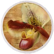 The Lady Slipper Orchid Round Beach Towel