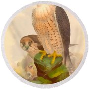The Lanner Falcon Round Beach Towel