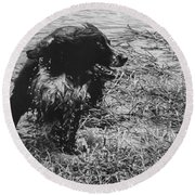 The Laughing Springer Round Beach Towel