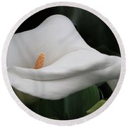 The Legend Of The Calla Lily Round Beach Towel