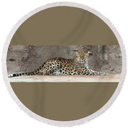 The Leopard Round Beach Towel