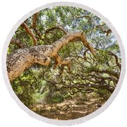The Life Of Oaks - The Magical Trees Of The Los Osos Oak Reserve Round Beach Towel