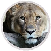 The Lion Queen Round Beach Towel